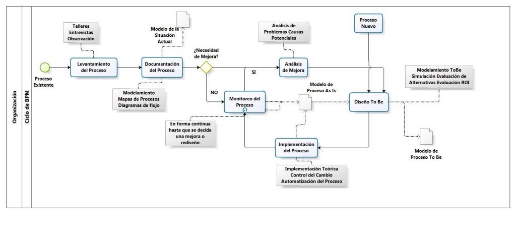 organizacion_ciclo_de_bpm_scholarium